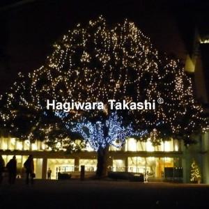 上野芸大 レクサスクリスマスコンサート